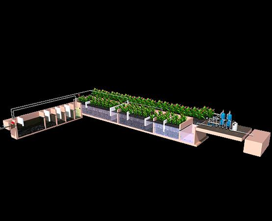 Integrated Wetland Technology (IWT-IIT Bombay IP)